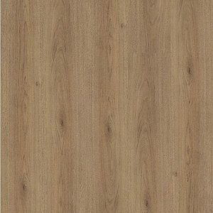 Trendy Oak Wood